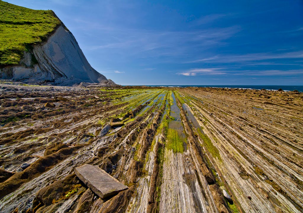 FLYSCH AND CIDER TOUR